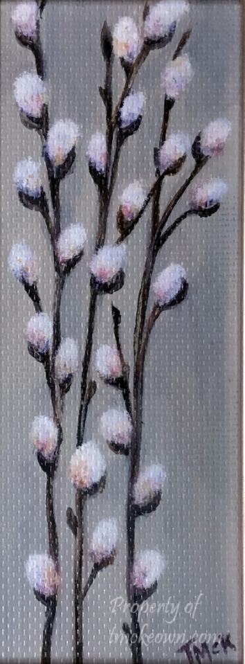 Pussy Willows #1